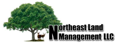 Northeast Land Management